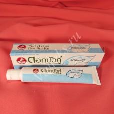 Натуральная антибактериальная зубная паста с травами Herbal Twin Lotus FRESH COOL
